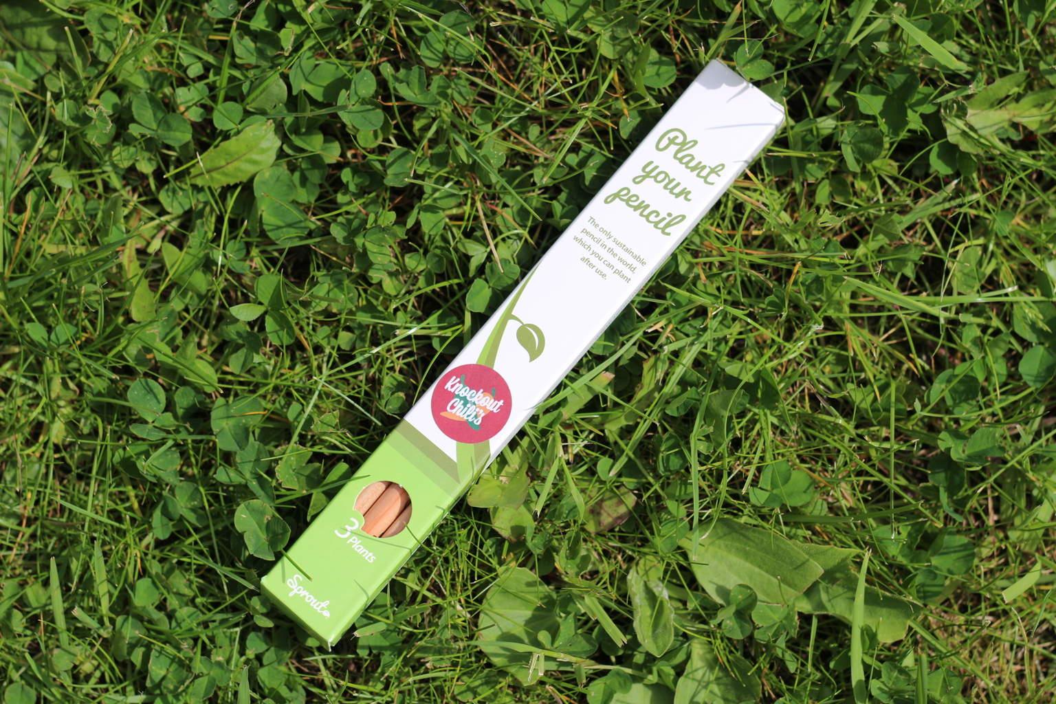 Sprout plantable chilli pencils