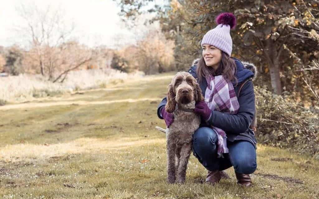 How to Choose the Perfect Dog Walking Jacket