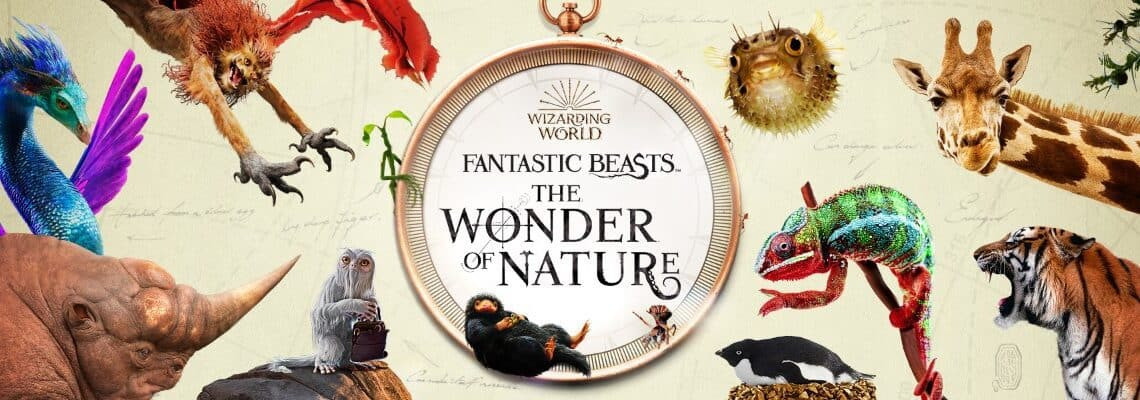 Fantastic Beasts: The Wonder of Nature at the Natural History Museum